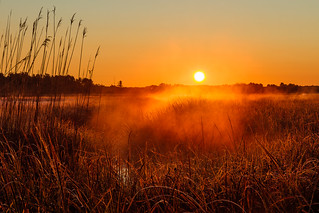 Sunrise on the Marsh - [Explored] 4-28-12 | by Tom Whitney Photography