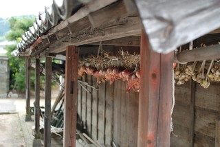 Hang onions under the eaves @ my grandmother's house. | by ugopapa