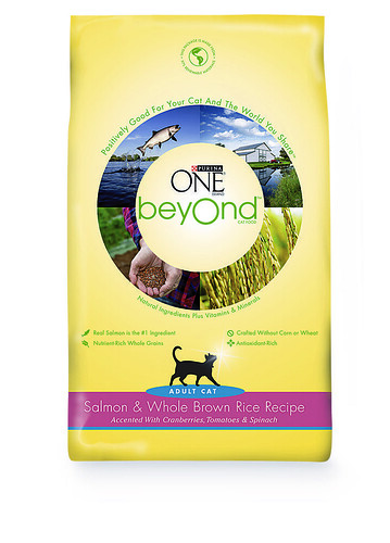 Purina Beyond Dog Food Walmart