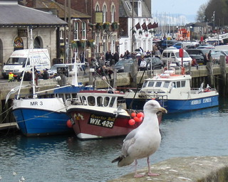 Weymouth harbour | by Capturing snapshots