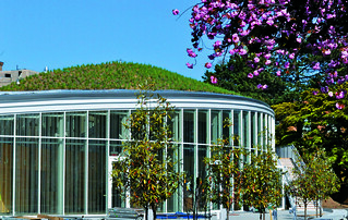 Visitor Center green roof | by Brooklyn Botanic Garden
