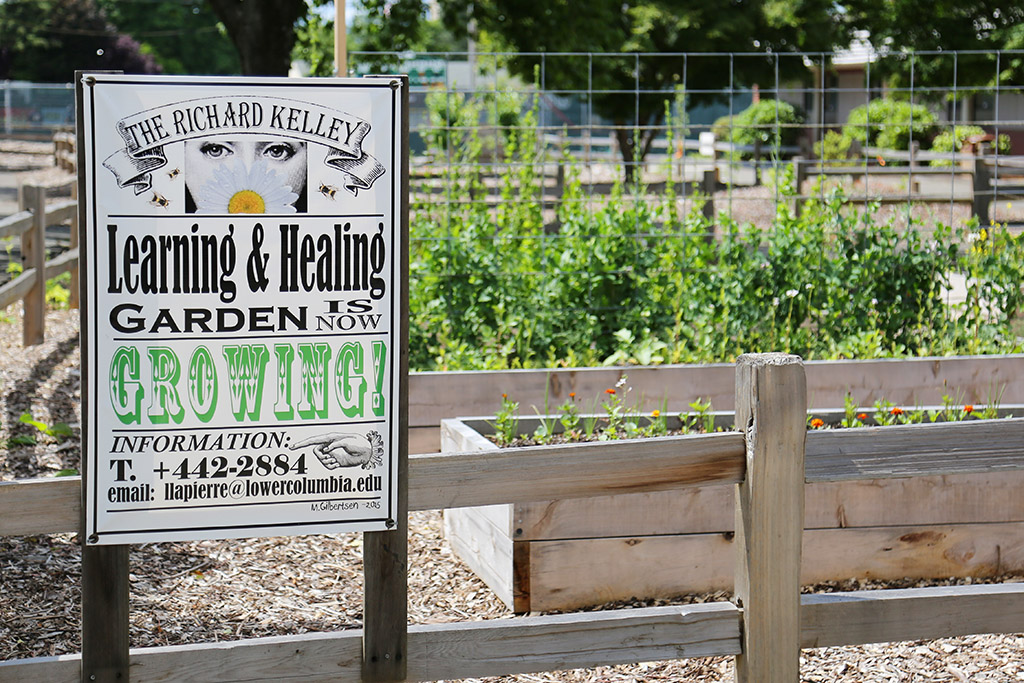 Richard Kelley Learning & Healing Garden | The garden is loo… | Flickr