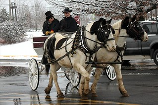 Horse Drawn Carriage Rides | by IndianPrairie