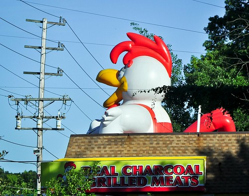 Route 40 Chicken | by school40