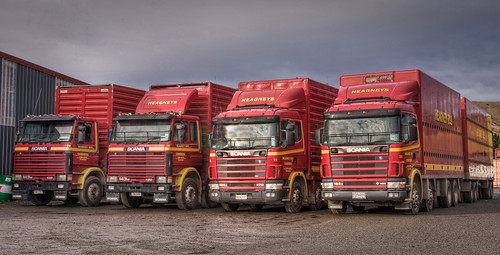 SCANIA line up | by Chook with the looks