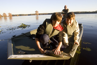 Fwc lake talquin florida fish and wildlife flickr for Lake talquin fishing report