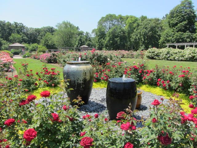The Rose Garden at Cantigny | The Rose Garden | Patricia Henschen ...