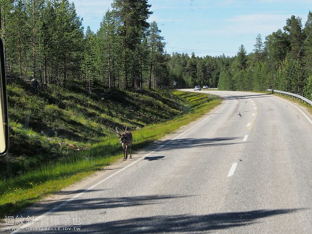 Road trip from Rovaniemi to Nordkapp, Norway