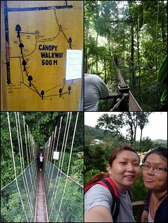 Taman Negara trip  May 2012 - canopy walk | by suanie