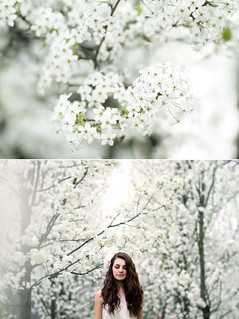 Spring | by Lauren Anna Hitchman
