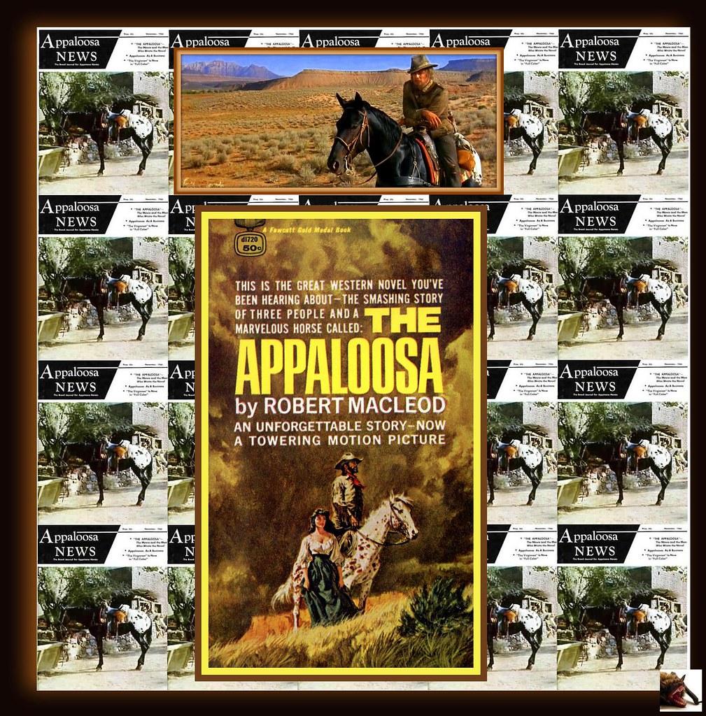 The Appaloosa 1966  IMDb