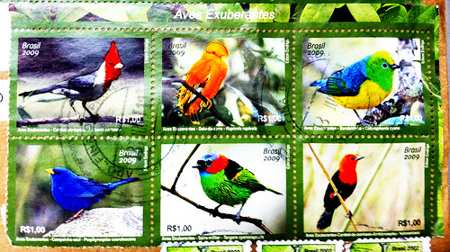Six Bird Stamps from Brazil | by JFGryphon