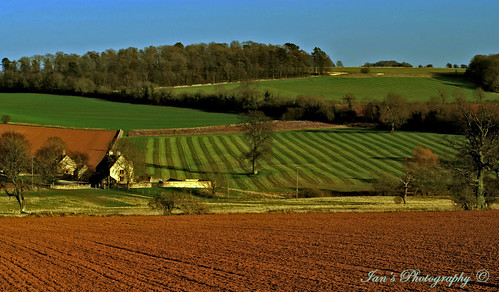 Fields light and lines. | by Scooby ...