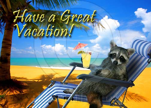 Have A Great Vacation Raccoon