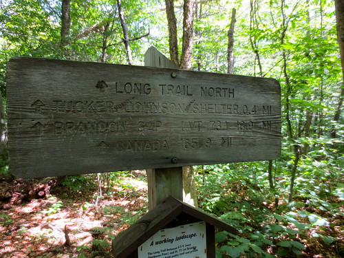 Long Trail Section 6 | by Squidly