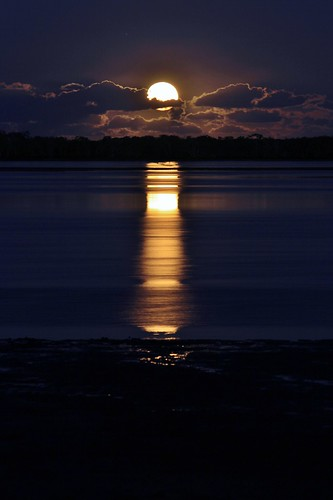 Moonrise over Cabbage Tree Point | by Rebecca Demler