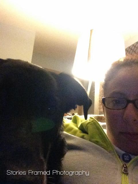 279. | late night dog selfie.