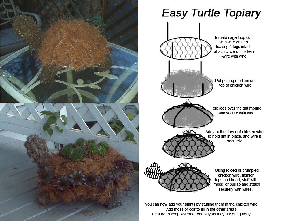Chicken Wire Topiary Diy Center Hi2004 Ford F150new Body My Power Window Is Not Working Turtle How To Make A From Tom Flickr Rh Com Green Piece Art Large Forms