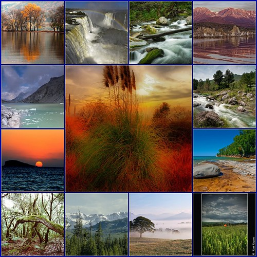 APPLAUSE to the most awarded photos  of  'pure nature ~ Natur pur': My Collage  No. 39 | by © the-best-is-yet-to-come ©
