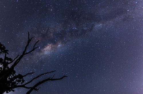 Milky Way with Tree | by collectionselements