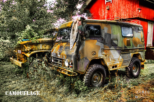 Camouflage 2 - HDR | by TM photoz - TrondM