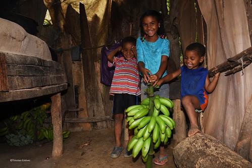 Tierra alta del cacao, el diviso  (3)