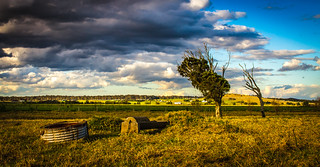 country side Morpeth NSW | by zateom
