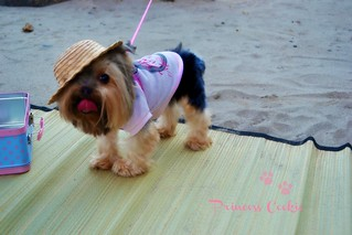 Princess cookie..............♥ | by Pink♥World
