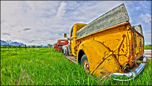 Put out to pasture | by Mark Payton Photography