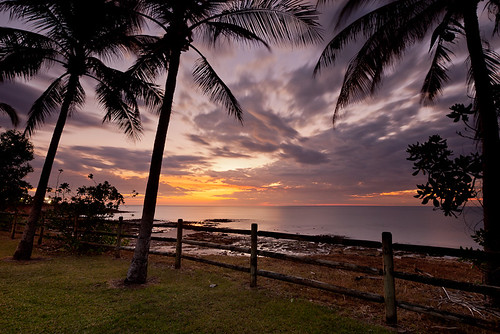 Coconuts at Sunset | by Nolan Caldwell