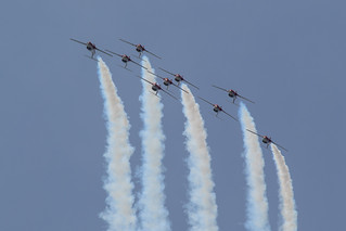 The Snowbirds | by Norman Graf