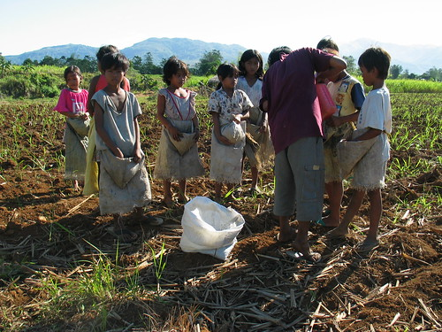 Children plantation workers in Bacolod, Philippines | by ILO in Asia and the Pacific