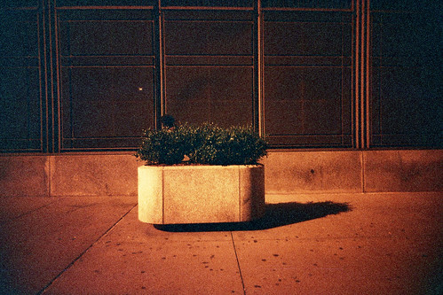 planter | by Charley Lhasa