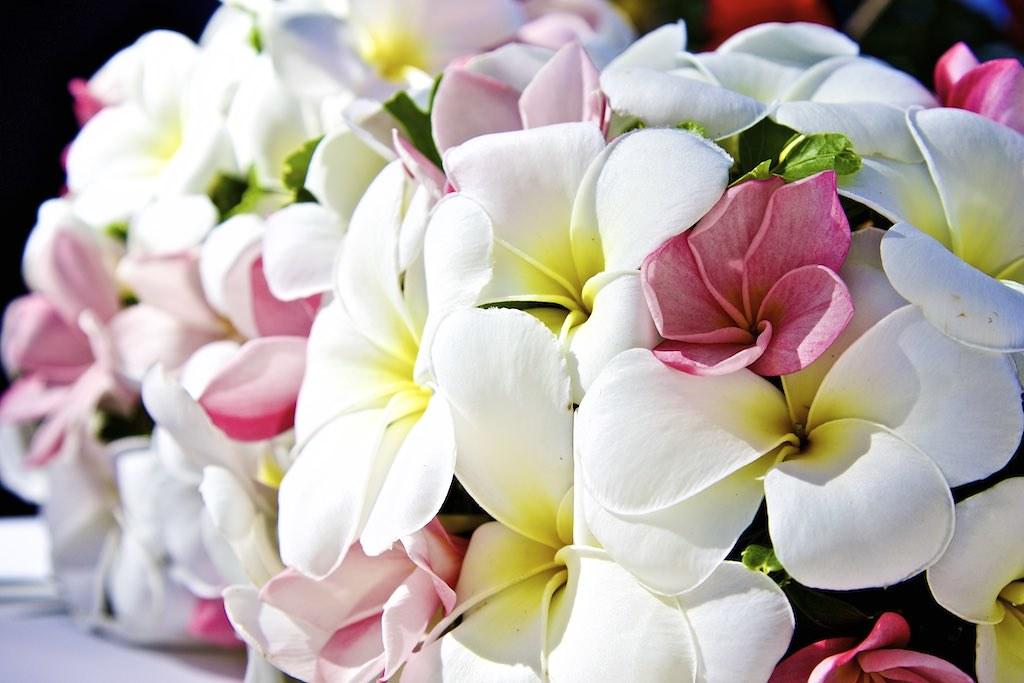 03 photographe mariage seychelles bouquet de fleur accessoire de la marie se marier aux seychelles - Photographe Mariage Seychelles