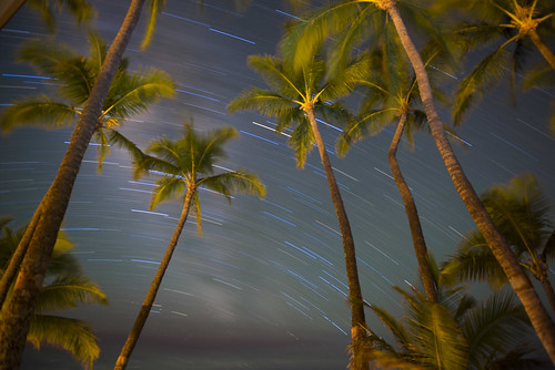 Maui Night | by Dennis H Miller
