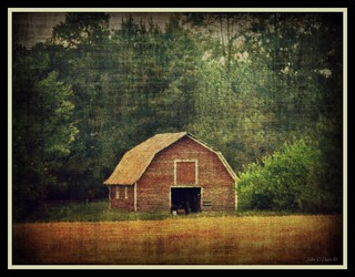 Country Barn | by John O Dyer