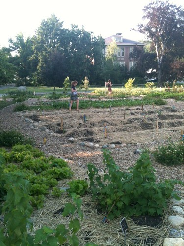 Franklin Permaculture 10 | by Zilkha Center