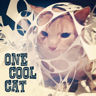 one-cool-cat | by swelldesigner