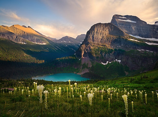 Bear Grass Heaven,  Glacier Park,  Montana | by Rob Macklin