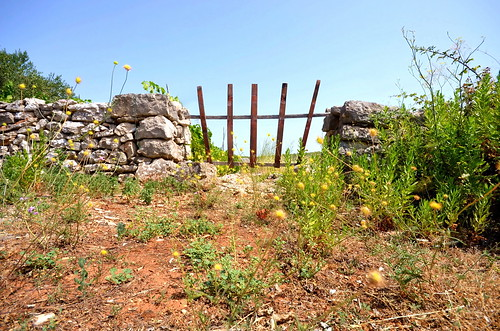 Gate in the field (Explore) | by Damir Barić - Real estate photographer