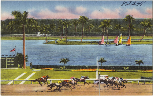 View of Gulfstream Park, Hallandale, Florida | by Boston Public Library