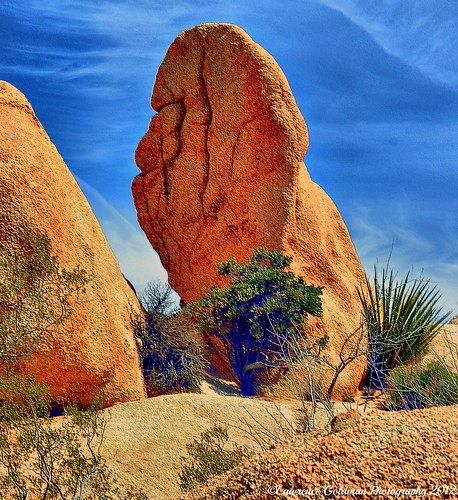 I Found Big Foot Joshua Tree National Park | by lhg_11, 2million views. Thank you!