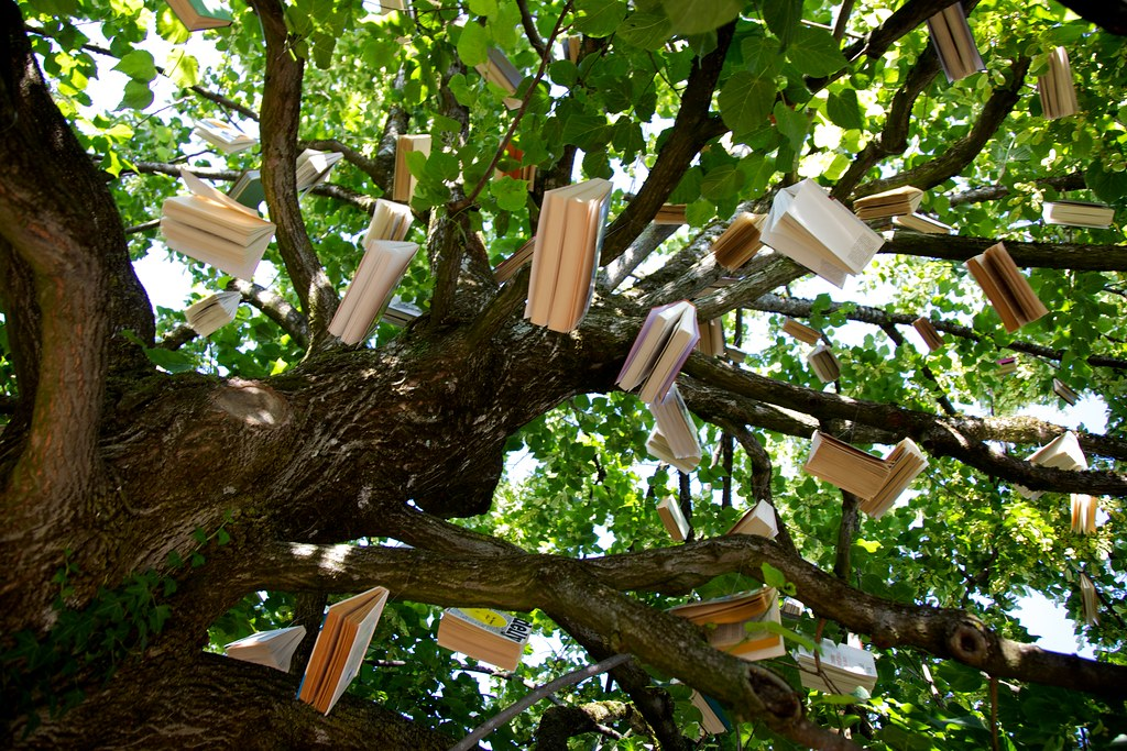 Image result for a book in a tree images