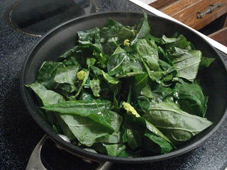 Collards | by YoAmes