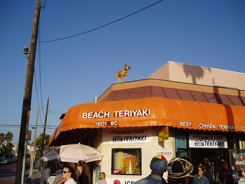 Dog on Roof in Venice Beach, CA | by Robert D Bruce