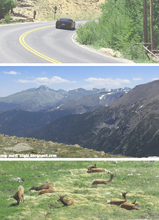 Rocky Mountain National Park - 6.23.2012 | by Jessie {Creating Happy}