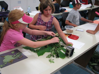 Biology Camp 2012 | by Emporia State University