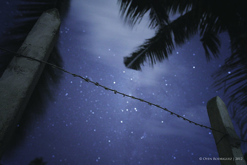 Barbed wire | by oyenbuang