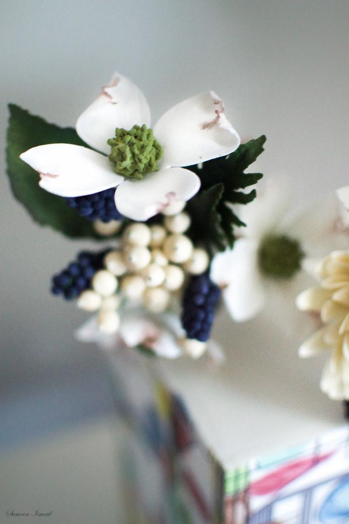 Dogwood sugar flower | Sameen Ismail | Flickr