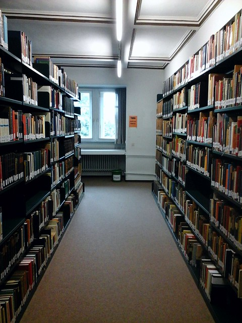 Hedgefairy: Institute for Study of Religion: Library